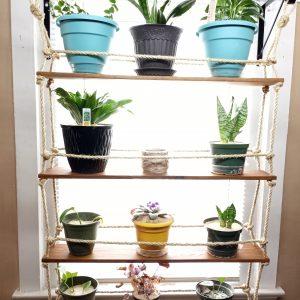 Hanging Botanical Shelf