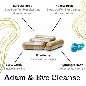 Adam & Eve Cleanse (180 Capsules)
