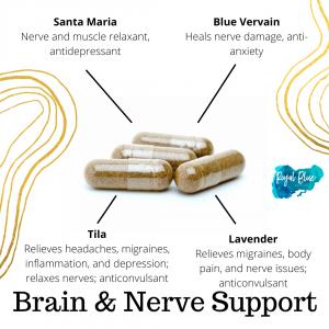 Brain & Nerve Support (120 Capsules)