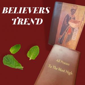 New King David Bible Cover